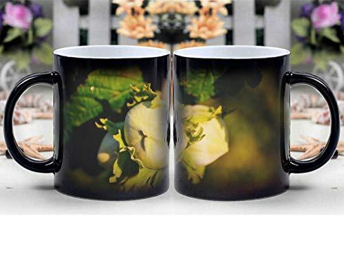 Amymami Personalized Gifts Heat Changing Magic Coffee Mug - Nature Filbert Hazelnut Hazelnuts Masuria Nut