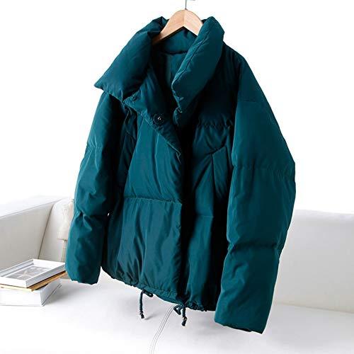 RCFRGV donsjack vrouwen Winter Mode Brood Stijl Losse Plus Size Eend Down Coat Vrouwelijke Borduurwerk Stand Kraag Warm Down Coat