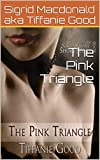 The Pink Triangle (Kari's Love Book 1)
