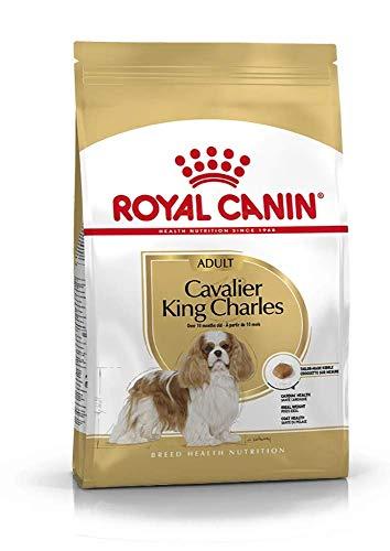 ROYAL CANIN - R.C.Cavalier King kg. 7,5