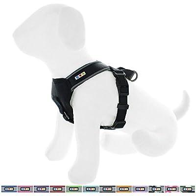 Pawtitas Reflective Dog Harness Padded Dog Harness