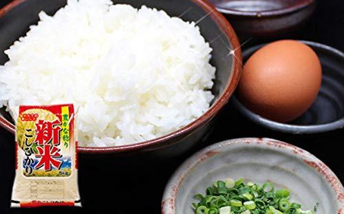 宮崎県産 コシヒカリ 5kg (無洗米, 5kg×1) [並行輸入品]