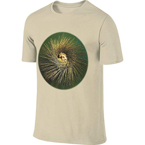 Customized Funny Short Sleeve Peter Gabriel - OVO T Shirts for Man,Tops Tees,T-Shirts & Hemden(XX-Large)