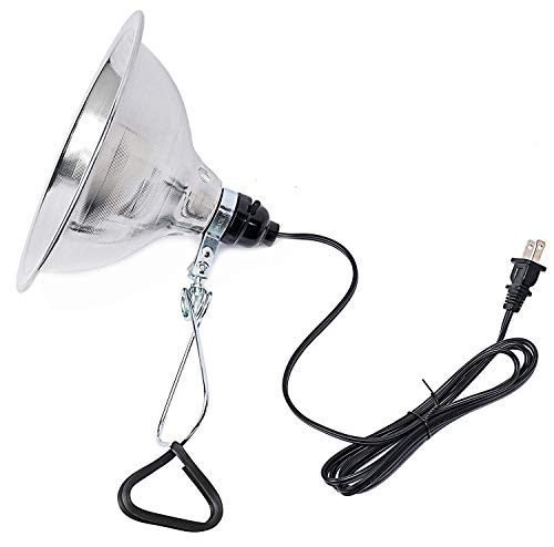 Simple Deluxe  Clamp Lamp Light with 8.5 Inch...