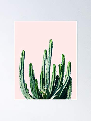 guyfam Cactus V6 Redbubble Lifestyle Poster 11.7x16.5 Inch Frame Board for Office Decor, Best Gift Dad Mom Grandmother and Your Friends