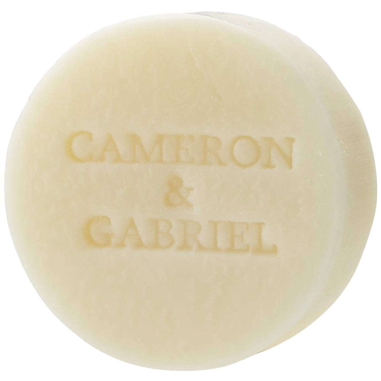 割り当てる雪の帝国主義キャメロン&ガブリエル 天使の聖石(化粧石鹸)80g 日本製