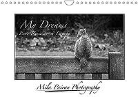 My Dreams. Eine Reise durch Europa (Wandkalender 2022 DIN A4 quer): Monatskalender mit schwarz-weiss Kunstfotografien (Monatskalender, 14 Seiten )