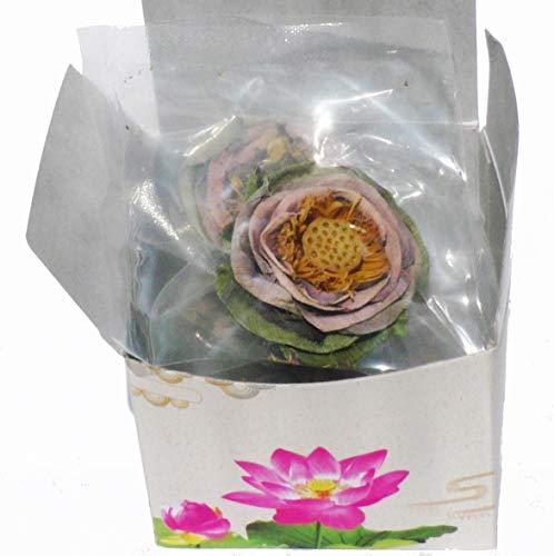 Tea Lotus Flower Tea Herbal Dried Whole Blossom - 5 per Box