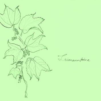 Trimountaine