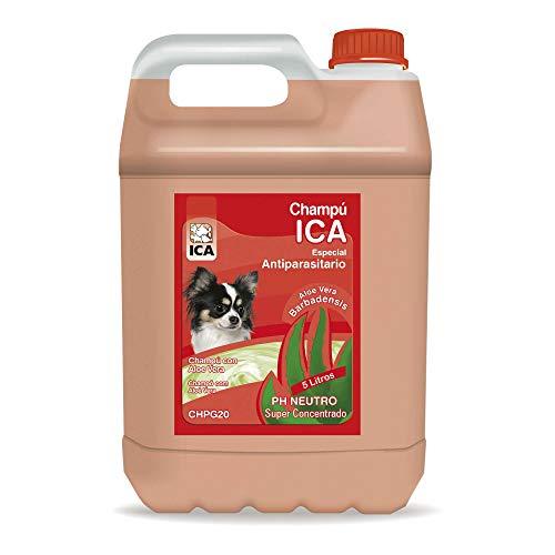 ICA CHPG20 Champú Antiparásitos Aloe Vera para Perros