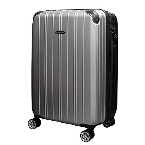 [DPN5035]キャリーケース スーツケース 軽量 Wキャスター TSAロック キャリーバッグ 旅行バッグ 旅行カバン (S, シルバー)