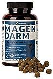 Schnüffelfreunde Magen Darm I Gastrointestinal per Il Cane I Supporta la Flora Gastro intestinale e la Regolazione intestinale Naturale nei Cani - con psillio Polvere ed Carbone vegetale