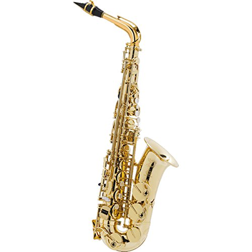 Selmer AS SELES AXOS GP-TONE Axos
