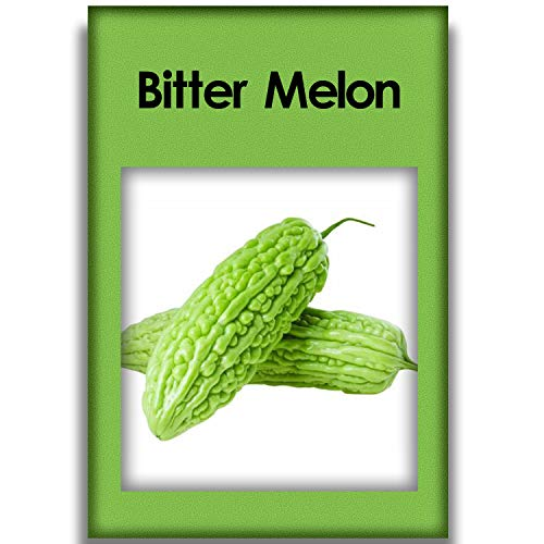 50 Bitter Melon Seeds Green Vegetables Used for All Family Heirloom Seeds on Indoor Balconies and Outdoor Garden Plants