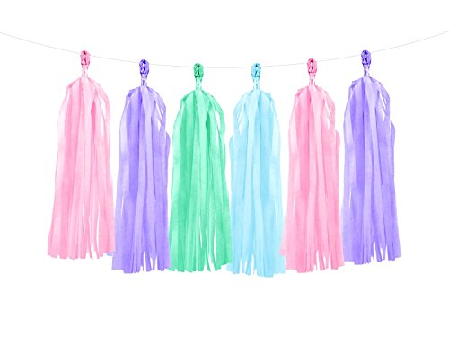 PartyDeco Large 5ft Multicolor Tassel Garland Party Decoration Pink Blue Green Purple