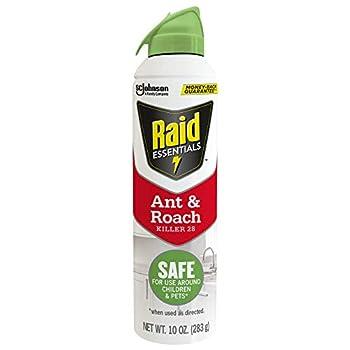 Best best roach killer indoor Reviews