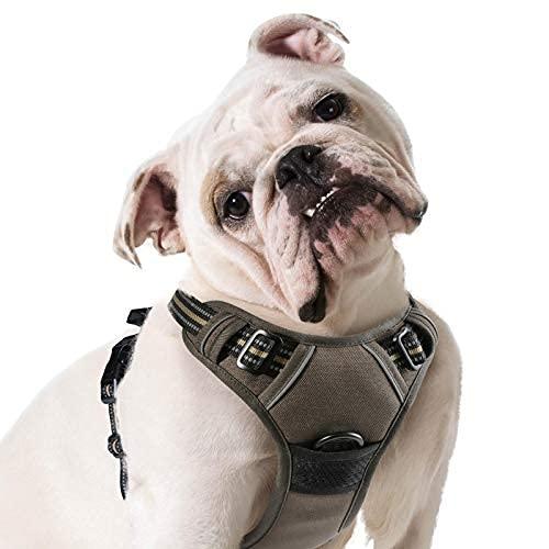 Eagloo Hundegeschirr Geschirr für Große Hunde Anti Zug Mittelgroße Brustgeschirr No Pull Sicherheitsgeschirr Auto Dog Harness Labrador Welpengeschirr Joggen Ausbruchsicher Weich Gepolstert Braun XL