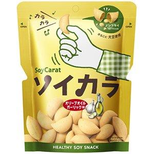 大塚製薬 ソイカラ オリーブオイルガーリック味 1ケース(18個)