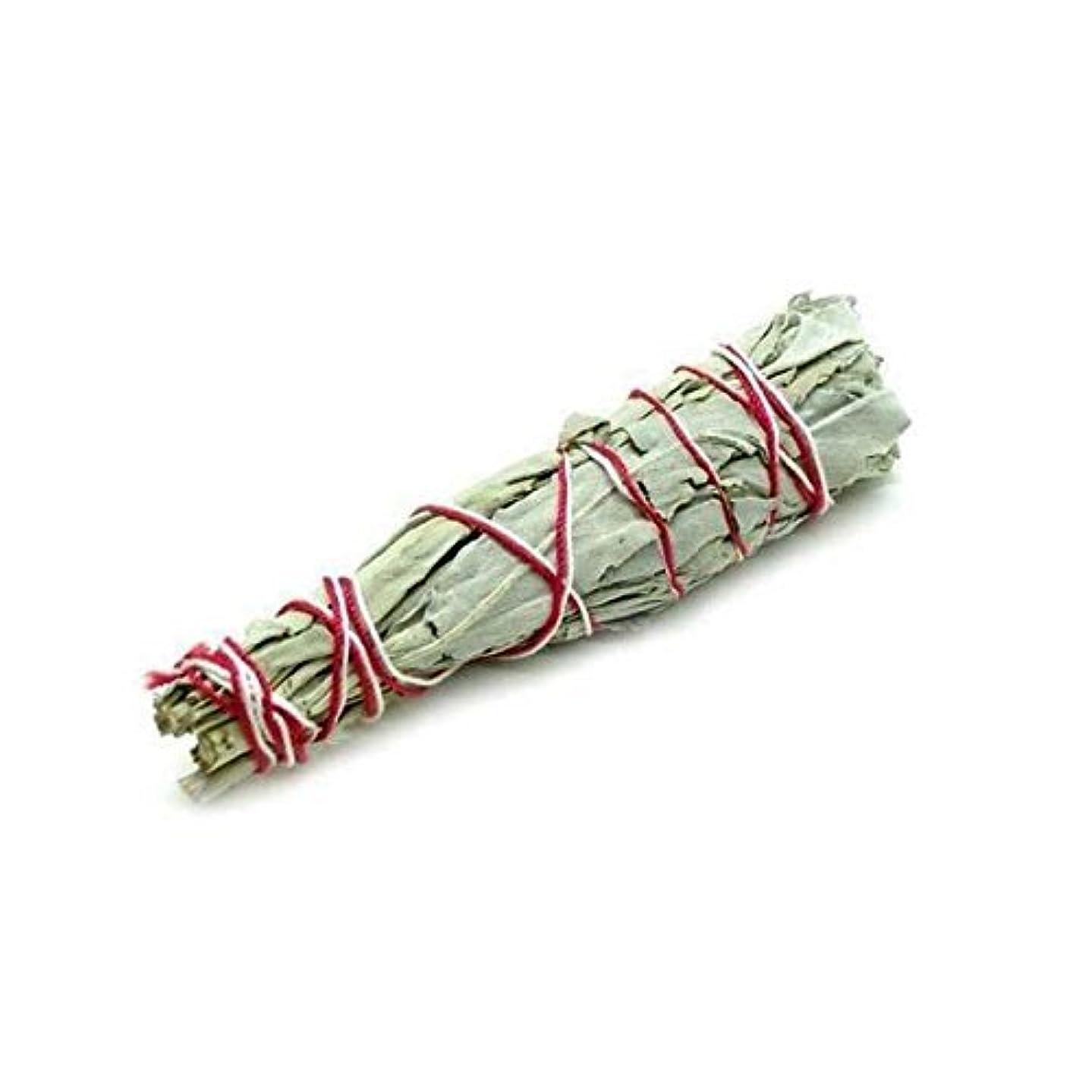 ブローホール歌うくすぐったいセージバンドル?–?ホワイトセージSmudge Stick使用のクレンジングとPurifyingエネルギー、瞑想、自然として、消臭?–?6?Inches Long