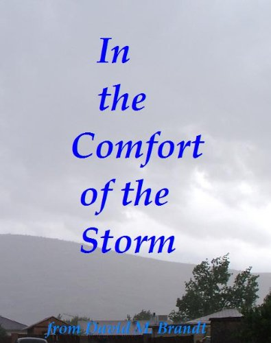 In the Comfort of the Storm (English Edition)