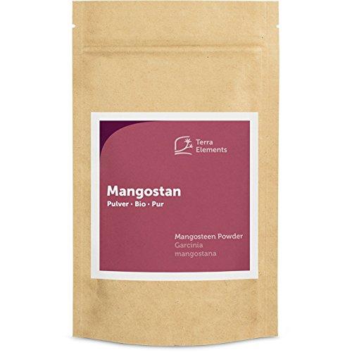 Terra Elements Bio Mangostan Pulver, 100 g I Mangosteen I Mangostin I 100% rein I Vegan I Rohkost