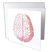 TNMGraphics Anatomy–Pink Brain–グリーティングカード Set of 6 Greeting Cards