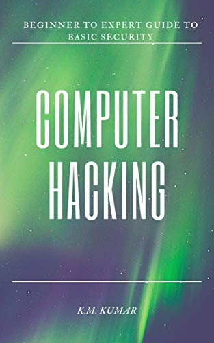 Computer Hacking: Beginner to Expert Guide to Basic Security (English Edition)