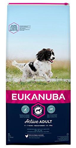Eukanuba hondenvoer voor middelgrote rassen, premium droogvoer met vers kip, verschillende leeftijdscategorieën, volwassenen., 15 kg, Adult normale activiteit middelgrote rassen