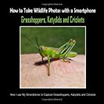 Grasshoppers, Katydids and Crickets: How I Use My Smartphone to Capture Grasshoppers, Katydids and Crickets (How to Take Wildlife Photos with a Smartphone)