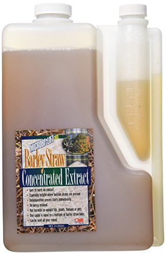 Ecological Labs 971002   AEL20071 Microbe Lift Barley Straw Extract Pond Conditioners for Aquarium, 64-Ounce