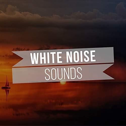 Sleep Ambience & Calm Sea Sounds