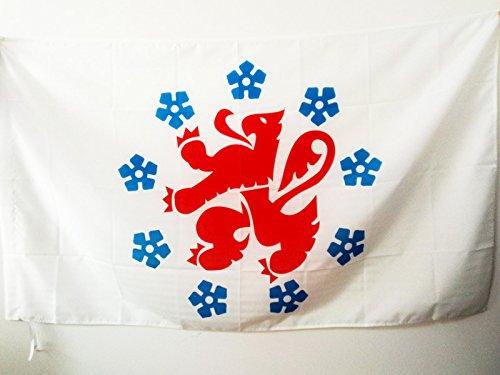AZ FLAG Flagge DEUTSCHSPRACHIGE GEMEINSCHAFT 150x90cm - DG Belgien Fahne 90 x 150 cm Scheide für Mast - flaggen Top Qualität