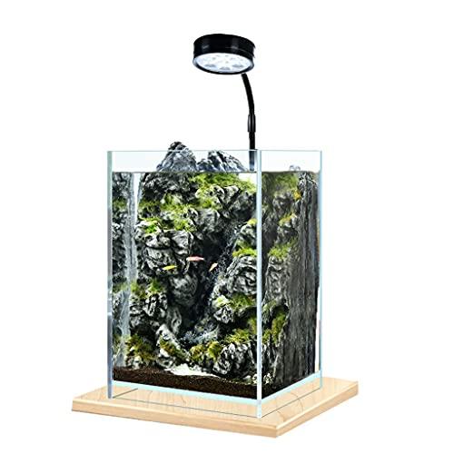 DALIZHAI777 Aquarium Desktop Kleiner Fischtank Landschaftsgestaltung DIY Wasserpflanze Tank Büro Home Desktop Kleine ökologische Fischtank Desktop Dekoration Fischglas