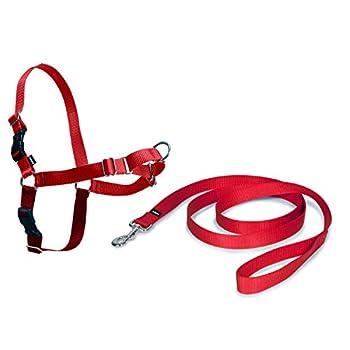 PetSafe Harnais Easy Walk avec boucle Anti-Traction et laisse de 1,8 m, promenade confortable pour vous et lui - 4 points de Réglage – Résistant, facile à mettre et enlever – Rouge, taille L