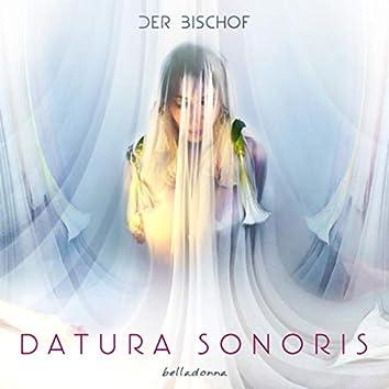 Datura Sonoris - Belladonna