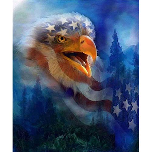 5d Diamond Painting Kits for Adults Kids,Full Diamond Embroidery Rhinestone Cross Stitch Arts Craft Eagle and Flag 11.8x15.7 in by Megei