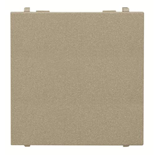 Placa de cubierta ciega de 2 módulos para espacios libres, 3 x 4,4 x 4,4 centímetros, color champagne (referencia: N2200 CV)