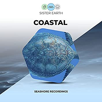 Coastal Seashore Recordings