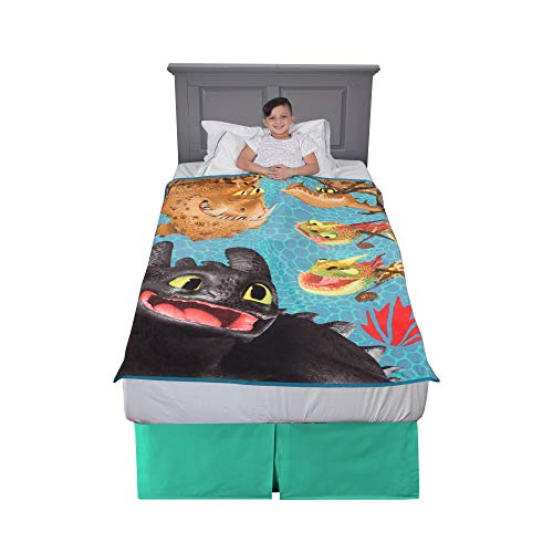 "Franco Kids Bedding Super Soft Plush Throw, 46"" x 60"", How to Train Your Dragon"