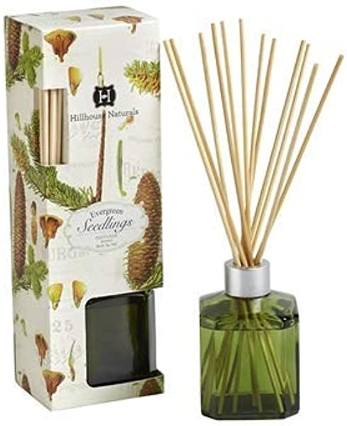 Hillhouse Naturals Reed Diffuser 5 Oz Evergreen Seedlings