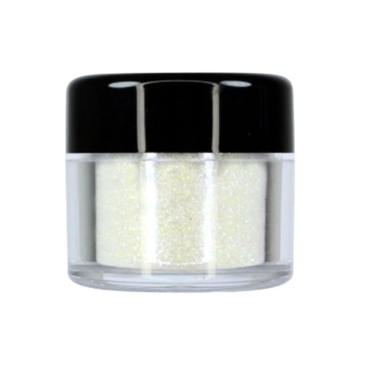 巨大乗って施設CITY COLOR Sparkle & Shine Ultra Fine Loose Glitter - Countdown (並行輸入品)
