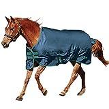 Saxon. 600D Standard Neck Medium Turnout Blanket Blue/Evergreen 69'