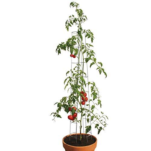 bellissa Tomatenturm - 90400 - Rankhilfe für Tomaten und Gurken - Stütze zum Pflanzen von Gemüse - Durchmesser 13 cm, Höhe 120 cm