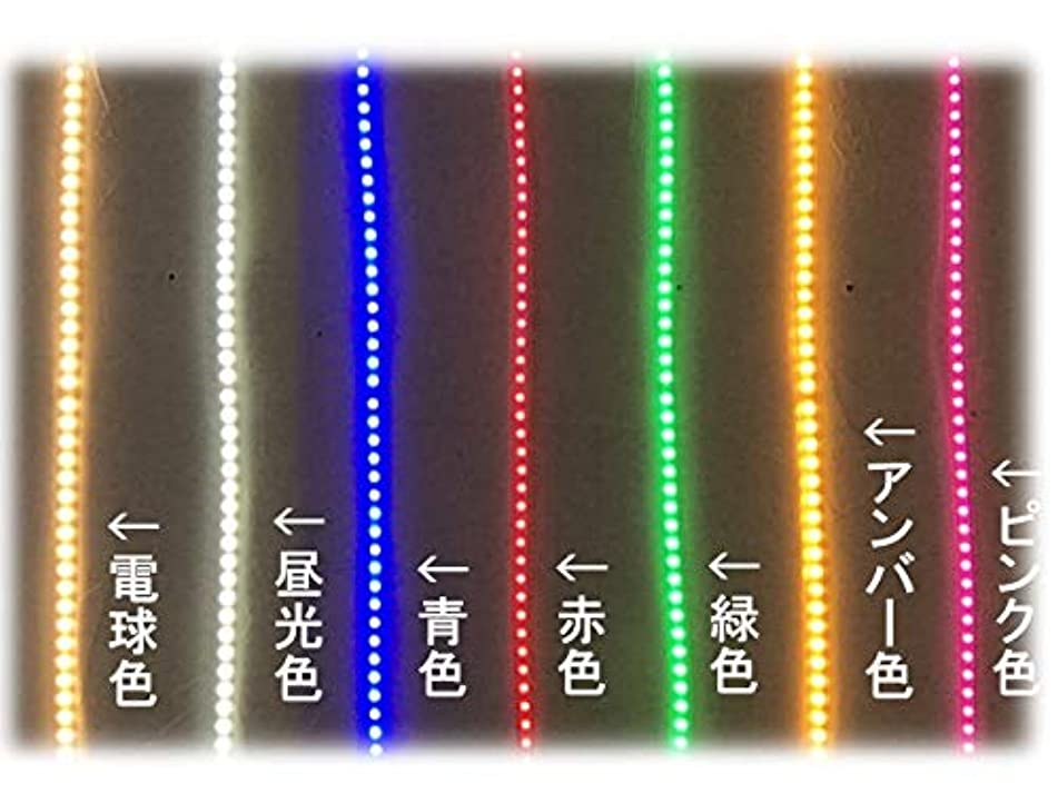 団結する対抗望まない5050LEDテープライト コンセントプラグ付き AC100V 50CM 配線工事不要 簡単便利 7色 お試し 棚照明 間接照明 CY-TP5X0M (青色)