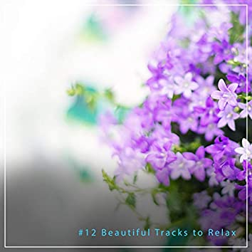 #12 Beautiful Tracks to Relax