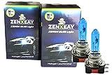 ZENXEAY H15 - Bombillas halógenas para coche (xenón, 55 W, 12 V, 2 unidades)