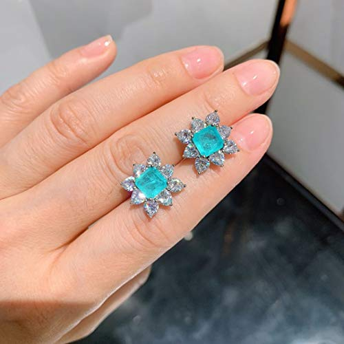 Home CNLXDSB Earring Plated Cubic Diamond Sparkle Round Stud Earrings 925 Sterling Silver Fine Jewelry for Women Men for Women Girls (Gem Color : Blue)