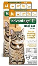 Bayer Advantage 2 Small Cat 2-Pack 5-9# Orange (Pack of 2)