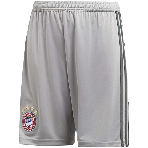 adidas Kinder 18/19 FC Bayern Goalkeeper Short Torwart, Light Granite/Utility ivy, 164