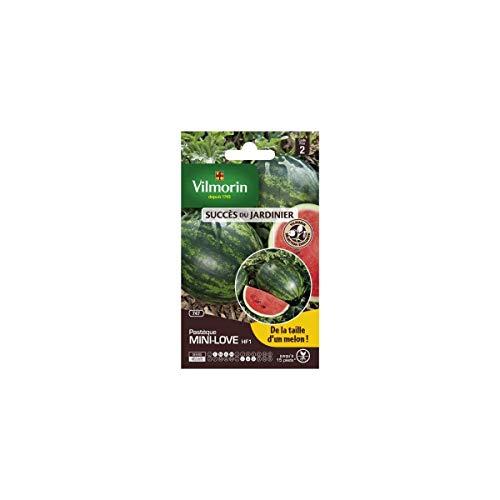 Vilmorin - sachet graines Pastèque mini love HF1 Vilmorin